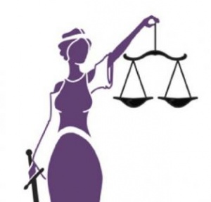 Image result for women in law